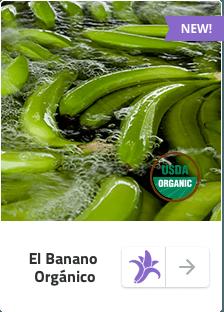 Banano Sabrostar | Organico